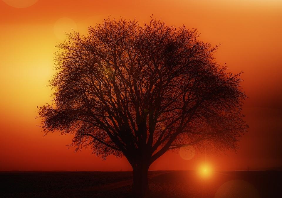 Doğa'dan Muhteşem Gün Batımı Kareleri 18