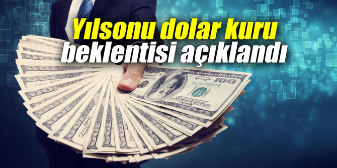 Yıl sonu dolar kuru beklentisi açıklandı