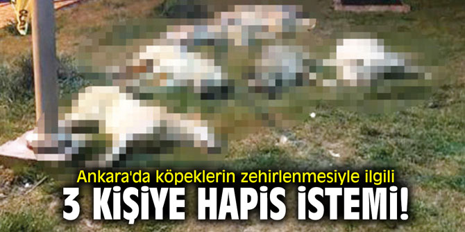 Ankara'da köpeklerin zehirlenmesiyle ilgili 3 kişiye hapis istemi!