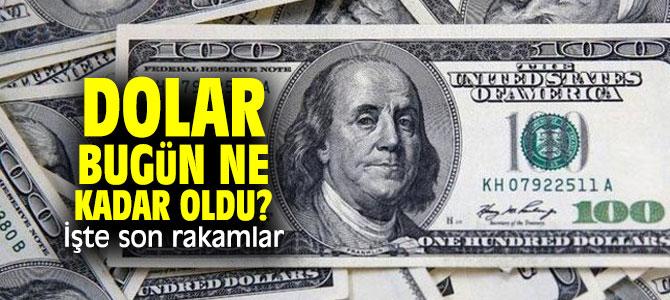 Dolar bugün ne kadar oldu? İşte son rakamlar