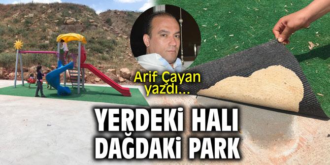 Yerdeki halı, dağdaki park! Arif Çayan yazdı...
