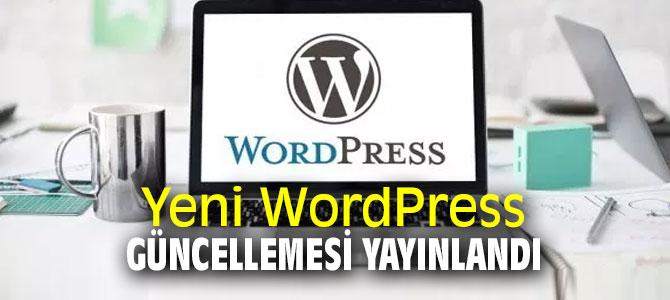 WordPress 5.2.3 güncellemesi sorunları çözüyor