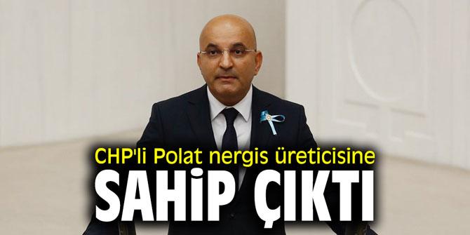 CHP'li Polat nergis üreticisine sahip çıktı