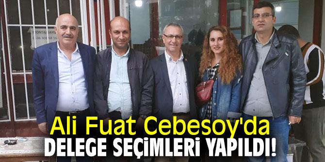 Ali Fuat Cebesoy'da delege seçimleri yapıldı!