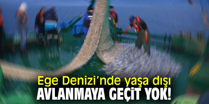 Ege Denizi'nde yaşa dışı avlanmaya geçit yok!