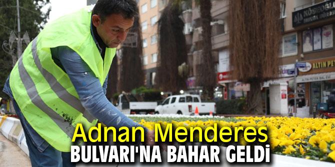 Aydın Büyükşehir Belediyesi Aydın'ı güzelleştiriyor!