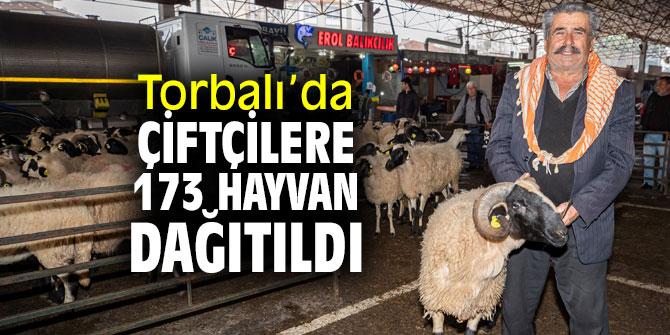 Büyükşehir, Torbalı'da çiftçilere hayvan dağıttı