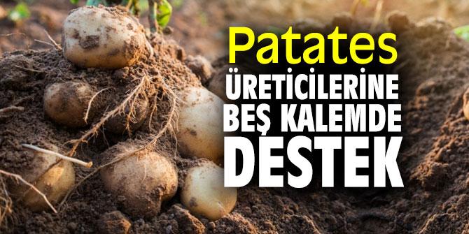 AK Partili Kırkpınar, patates üreticisine verilen destekleri açıkladı