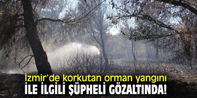 İzmir'de korkutan orman yangını ile ilgili şüpheli gözaltında!