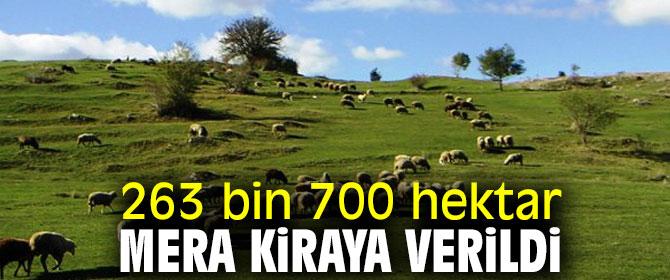 263 bin 700 hektar mera kirada!