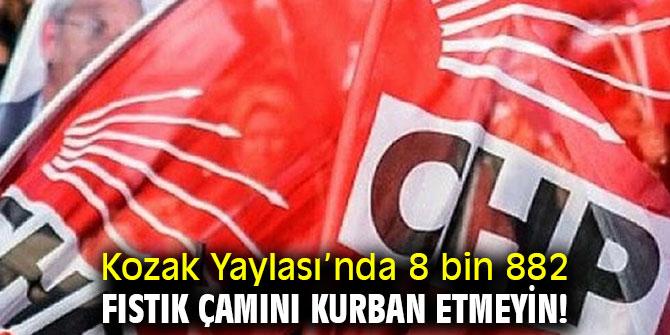 CHP'li Beko, 'Kozak Yaylası'nda 8 bin 882 fıstık çamını kurban etmeyin!'
