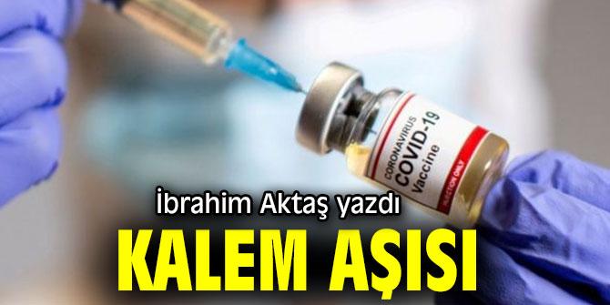 """""""Kalem aşısı"""" İbrahim Aktaş Yazdı..."""