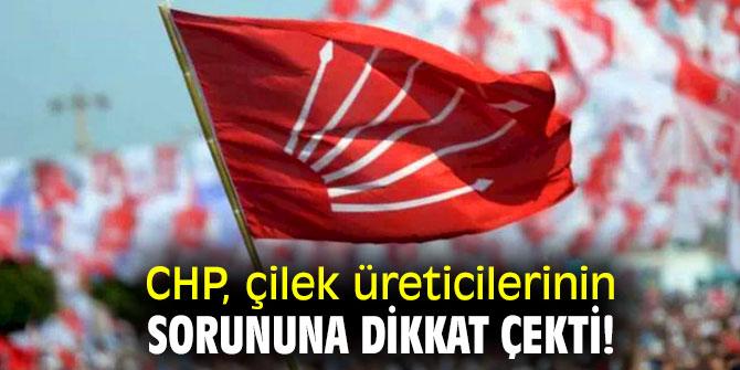 CHP, çilek üreticilerinin sorununa dikkat çekti!