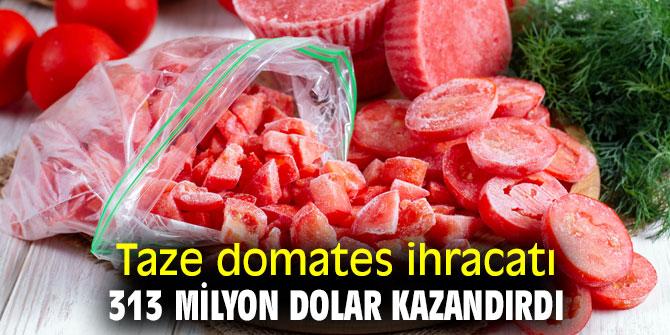 Taze domates ihracatı 313 milyon dolar kazandırdı
