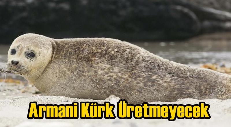 Armani Baskılara Dayanamadı Kürk Kullanmayı Bıraktı