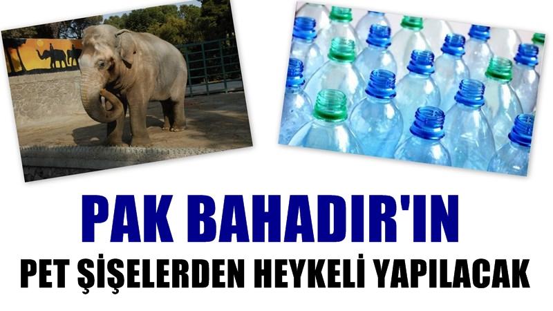 Pak Bahadır'ın Pet Şişelerden Heykeli Yapılacak
