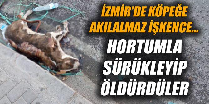 İzmir'de köpeğe akılalmaz işkence... Hortumla sürükleyip öldürdüler