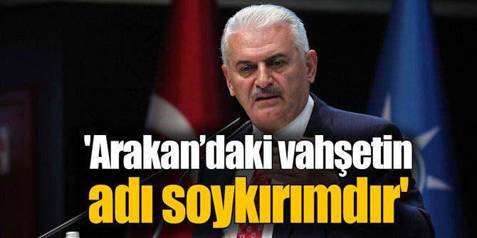 'Arakan'daki vahşetin adı soykırımdır'