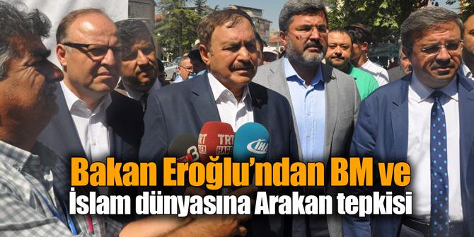 Bakan Eroğlu'ndan BM ve İslam dünyasına Arakan tepkisi