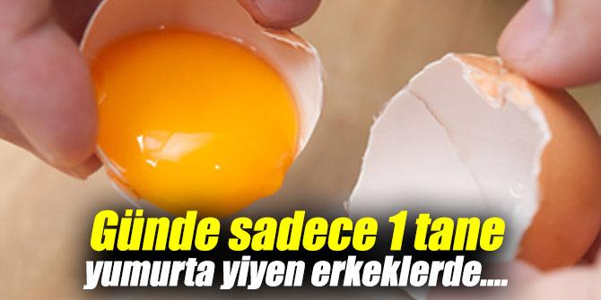 Günde sadece 1 tane yumurta yiyen erkeklerde....