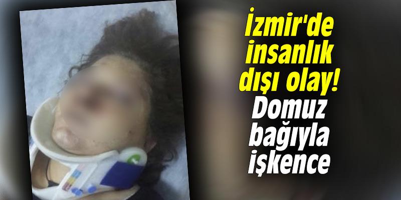 İzmir'de insanlık dışı olay! Domuz bağıyla işkence