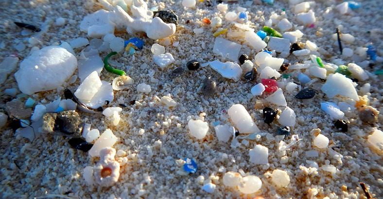 Vücudumuz plastiklerle dolu olabilir mi?