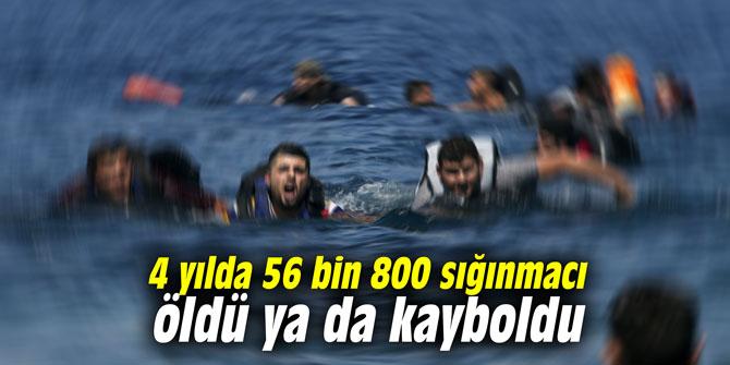 4 yılda 56 bin 800 sığınmacı öldü ya da kayboldu