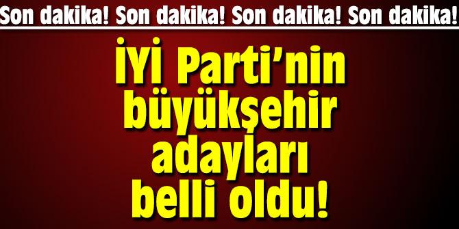 İYİ Parti'nin büyükşehir adayları belli oldu!