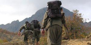 PKK çöküyor! Bölücü örgüt şimdi de hırsızlığa zorluyor