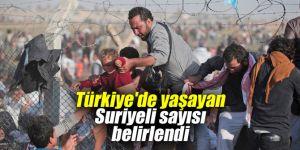 Türkiye'de yaşayan Suriyeli sayısı belirlendi