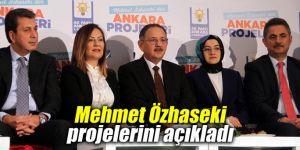 Mehmet Özhaseki projelerini açıkladı