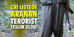 Gri listede aranan terörist teslim oldu!