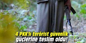 4 PKK'lı terörist güvenlik güçlerine teslim oldu!