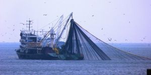 Yasa dışı ava 29 bin TL ceza kesildi