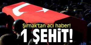 Şırnak'tan acı haber! 1 şehit!