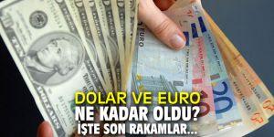 Dolar ve Euro ne kadar oldu? İşte son rakamlar...