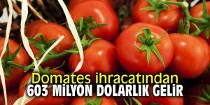 Domates ihracatından 603 milyon dolarlık gelir