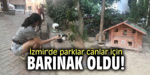 İzmir'de parklar canlar için barınak oldu (Selcan Öztürk'ün haberi)