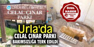 Urla'da Celal Çınar Parkı bakımsızlığa terk edildi