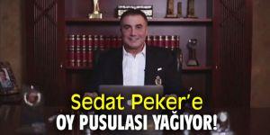 Sedat Peker'e 23 Haziran seçimi pusulası yağıyor!