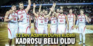 A Milli Erkek Basketbol Takımı'nın Dünya Kupası kadrosu belli oldu