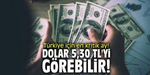 Türkiye için en kritik ay! Dolar 5,30 TL'yi görebilir!
