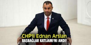 CHP'li Ednan Arslan Başbağlar Katliamı'nı andı!