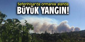 Seferihisar'da ormanlık alanda büyük yangın!