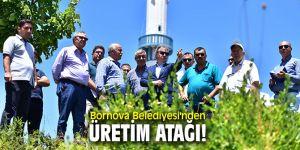Bornova Belediyesi'nden üretim atağı!
