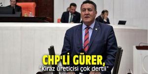 CHP'li Gürer, kiraz üreticileri ile bir araya geldi!