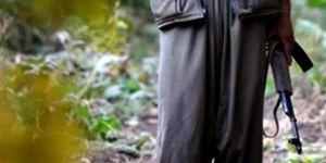 5 teröristen 3'ünün PKK, 2'sinin MLKP terör örgütü üyesi olduğu tespit edildi