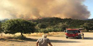 Urla'daki yangın Menengeç Koyu'na ilerliyor
