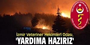 İzmir Veteriner Hekimleri Odası, 'Yardıma hazırız'