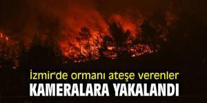 İzmir'de ormanı ateşe verenler mobil kameralara yakalandı